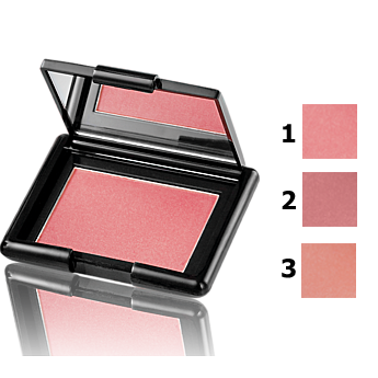 Fard de obraz Perfect Blush 5 g